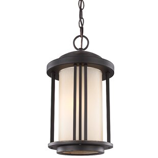 Dunkley 1-Light Outdoor Pendant by Darby Home Co