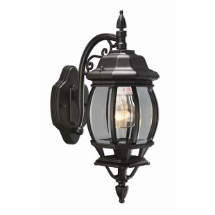 Alcott Hill Diederich Outdoor Wall Lantern