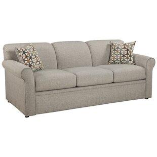 Cooldreamzzz Sleeper Sofa ..