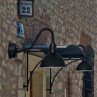 Cocoweb Blackspot LED Outdoor Barn Light