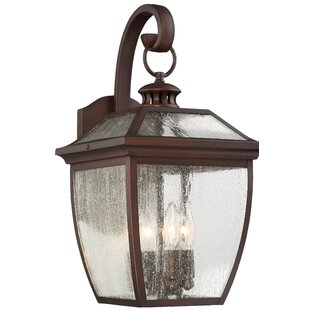 Savings Auer 4-Light Outdoor Wall Lantern By Darby Home Co