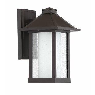 Fia Outdoor Wall Lantern by Breakwater Bay