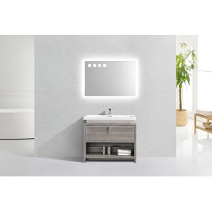 Politte 40 Single Bathroom Vanity Set