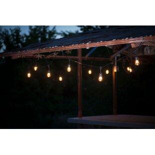 Aspen Brands Suspended Commercial Grade 24 Light Globe String Lights