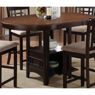 Winston Porter Jelks Dual-Tone Counter Height Extendable Dining Table