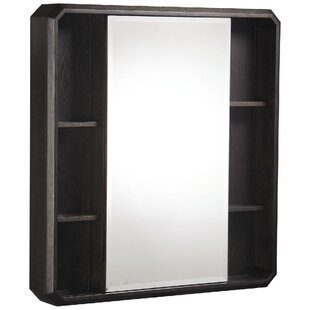Cirtangular 30 x 32 Surface Mount Medicine Cabinet by Danze?