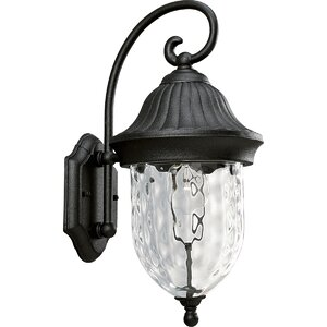Triplehorn 1-Light Outdoor Hammered Wall lantern