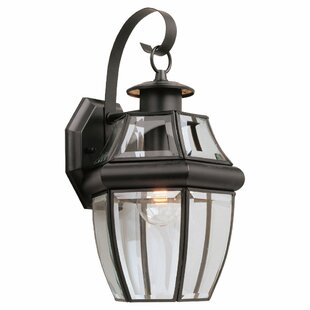 Alcott Hill Willard 1-Light Outdoor Wall Lantern