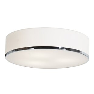 Mizpah Outdoor Flush Mount by Orren Ellis
