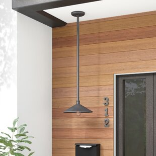 Shalena 1-Light Outdoor Pendant
