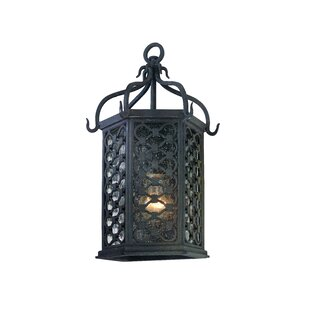 Darby Home Co Hinckley 1-Light Outdoor Wall Lantern