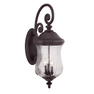 Fleur De Lis Living Berwyck 3-Light Outdoor Wall Lantern