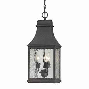 Read Reviews Negron 3-Light Outdoor Hanging Lantern By August Grove
