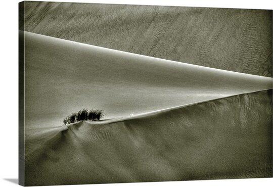 East Urban Home Diagonal Desert By Arash Karimi Photographic Print On Canvas Wayfair