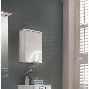 Sadowski 33 X 46.5cm Wall Mounted Cabinet By 17 Stories