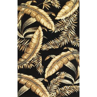 Read Reviews Murray Black Ferns Area Rug By Bay Isle Home