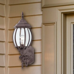 Thea 1-Light Outdoor Sconce