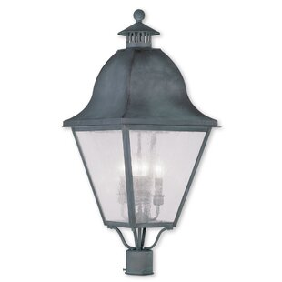 Goodhue Outdoor 4-Light Lantern Head by Alcott Hill