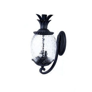 Savings Kyra 2-Light Outdoor Sconce By Beachcrest Home