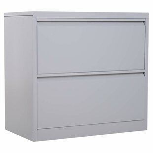 Symple Stuff Donita Metal 2 Drawer Latera..