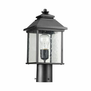Three Posts Hampstead Outdoor 1-Light Lantern Head