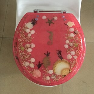 Cool Sea Treasure Elongated Toilet Seat Caraccident5 Cool Chair Designs And Ideas Caraccident5Info