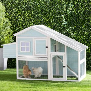 Dorothy Nantucket Chicken Coop