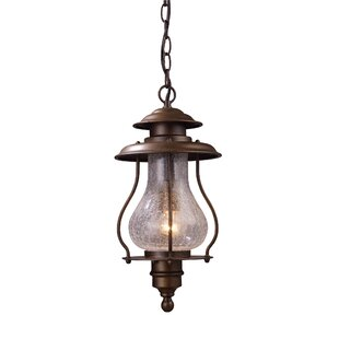Dylon 1-Light Outdoor Hanging Lantern