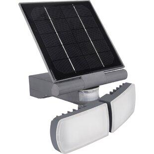 Pacific Accents Solar 50 LED Flood Light