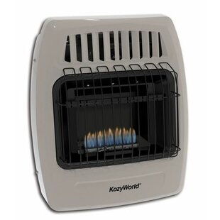 Vented Natural Gas Heaters Wayfair