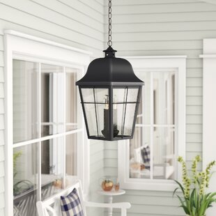 Darby Home Co Danielson 3-Light Outdoor Hanging Lantern