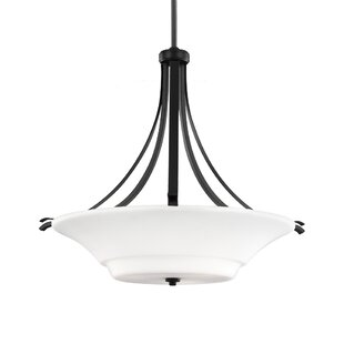 Darby Home Co Givan 3-Light Bowl Pendant