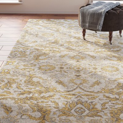 Farmhouse Amp Rustic Yellow Amp Gold Area Rugs Birch Lane