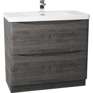Palethorp 900mm Free-Standing Vanity Unit By 17 Stories