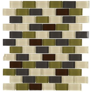 Review Geneva 1 x 2 Glass Brick Joint Mosaic Field Tile in Autumn Trail by Itona Tile