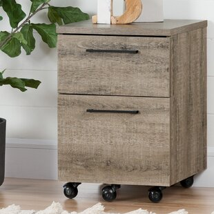 South Shore Munich 2 Drawer Mobile Vertical Filing Cabinet