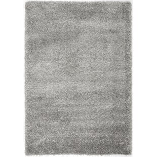 Top Reviews Thaddeus Colorway Silver Area Rug By Wade Logan