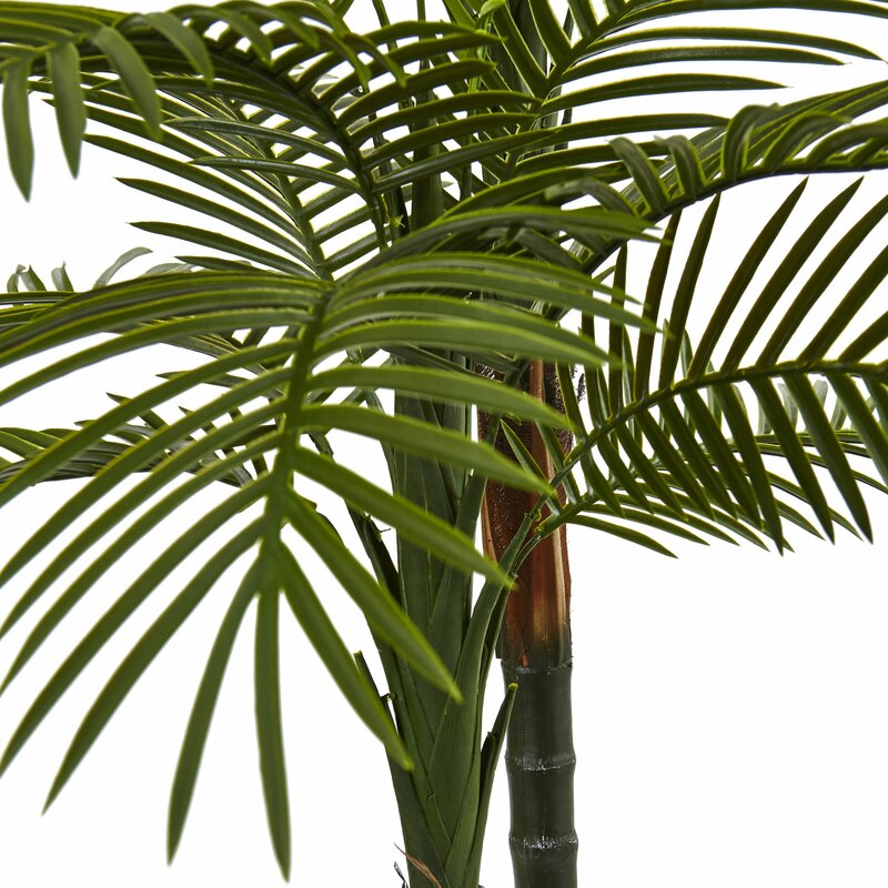 entracing palm tree type house plant. Double Robellini Palm Tree in Planter Nearly Natural  Reviews Wayfair