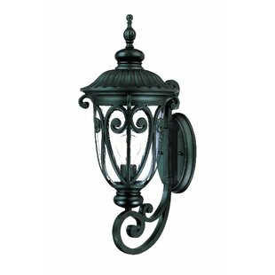 Astoria Grand Appalachian 1-Light Outdoor Sconce