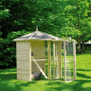 Bird Cage By Sol 72 Outdoor