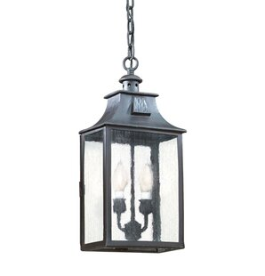 Compare Theodore 2-Light Outdoor Hanging Lantern By Darby Home Co