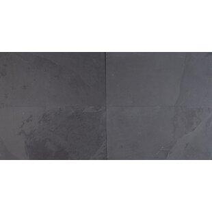 Fine 1200 X 600 Ceiling Tiles Tall 16X32 Ceiling Tiles Rectangular 18 Inch Ceramic Tile 18 X 18 Ceramic Tile Youthful 2 By 2 Ceiling Tiles Coloured2 X 2 Ceramic Tile Montauk Black Slate Tile | Wayfair