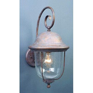 Rhodes 1-Light Outdoor Wall Lantern
