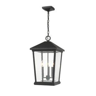 Hagberg 3-Light Outdoor Hanging Lantern
