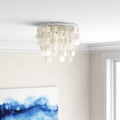 Shell Flush Mount Lighting You Ll Love In 2021 Wayfair