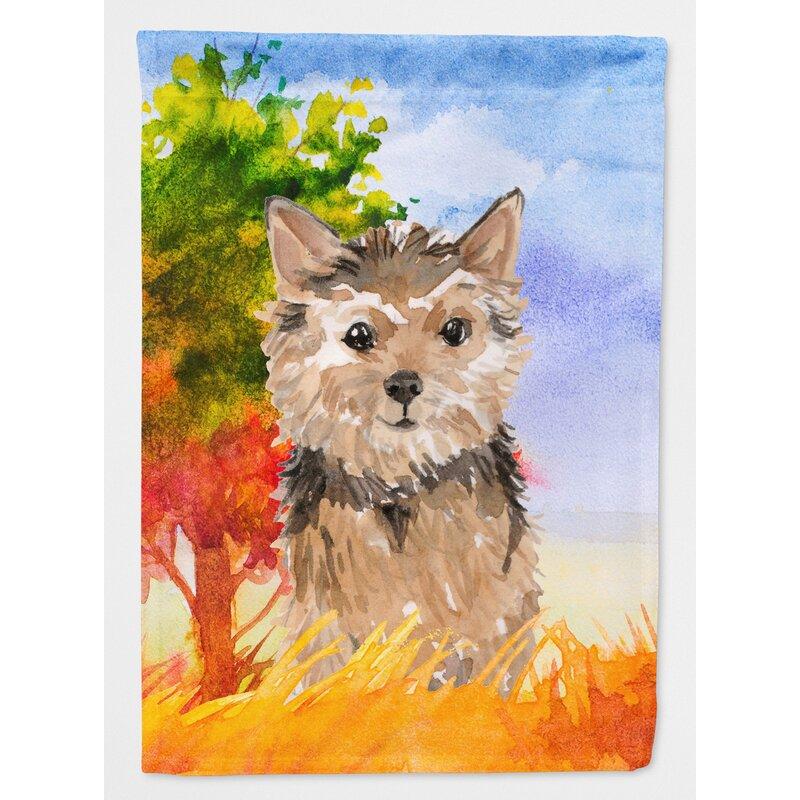 Caroline S Treasures Fall Norwich Terrier 2 Sided Polyester 15 X 11 5 In Garden Flag Wayfair
