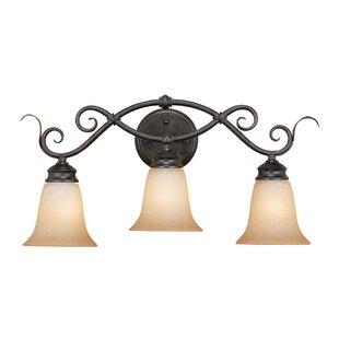 Great Price Birchwood 3-Light Vanity Light ByFleur De Lis Living