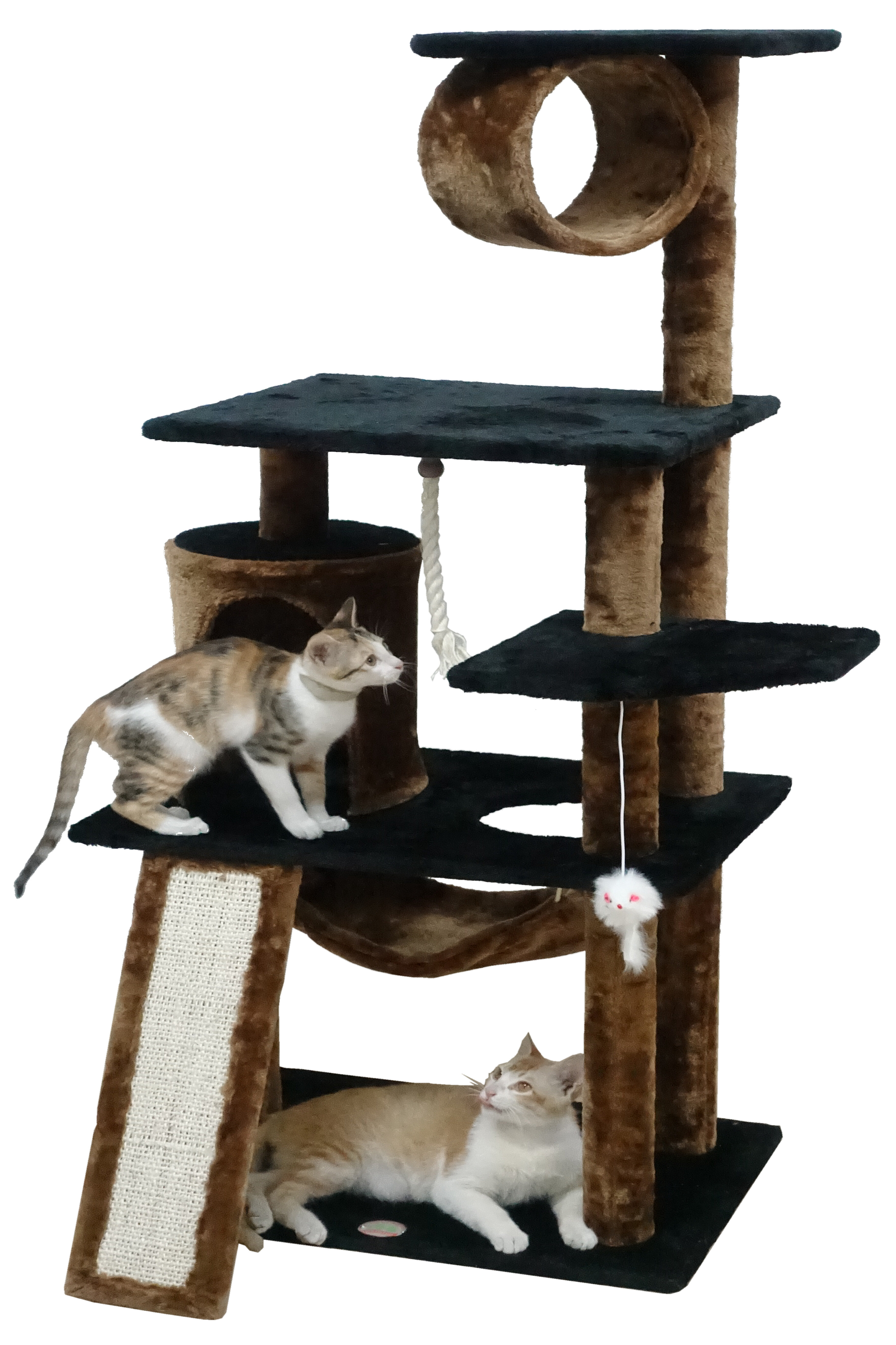 lounge product race sm racewaycat tree hammock creations web with small raceway catastrophic english fabric stretched cat