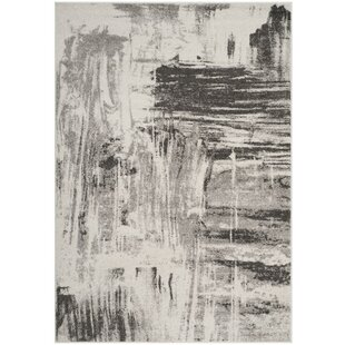 Best Reviews Costa Mesa Ivory/Gray Area Rug By Trent Austin Design