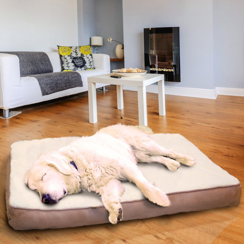 Top 10 Dog Beds – 2018 Reviews